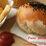 pains-farcis