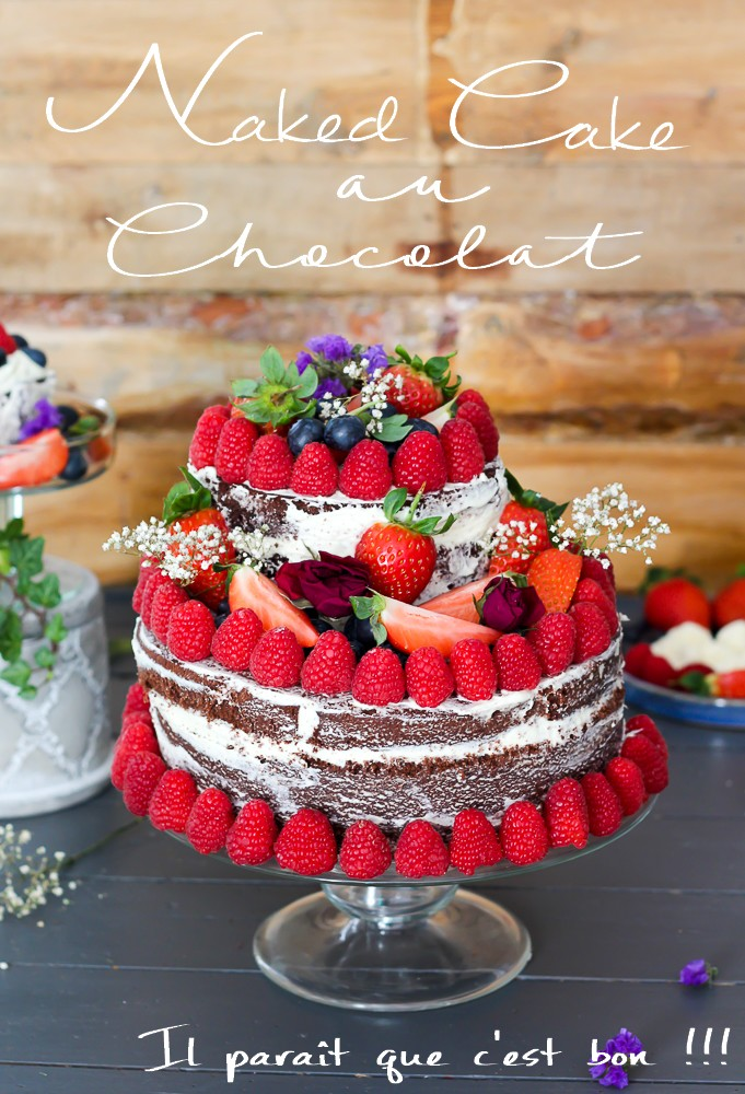 naked cake au chocolat  et fruits rouges